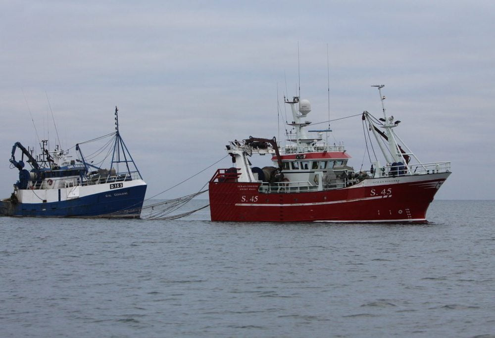 Pair trawlers targeting sprats off West Cork